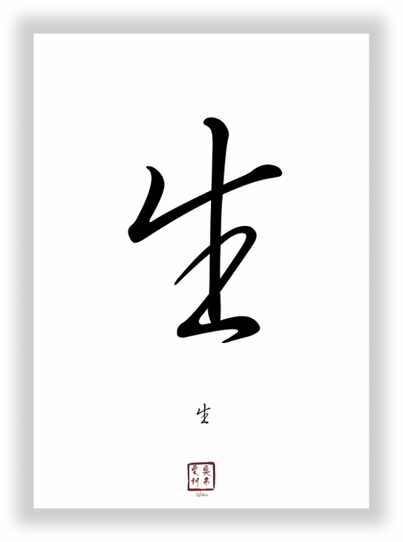 Leben chinesisches japanisches Schriftzeichen Zeichen Symbol