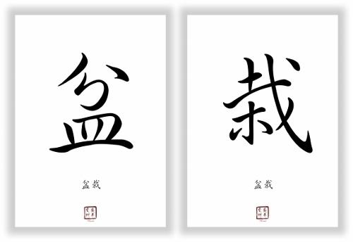 bonsai chinesische japanische schriftzeichen zeichen symbole. Black Bedroom Furniture Sets. Home Design Ideas